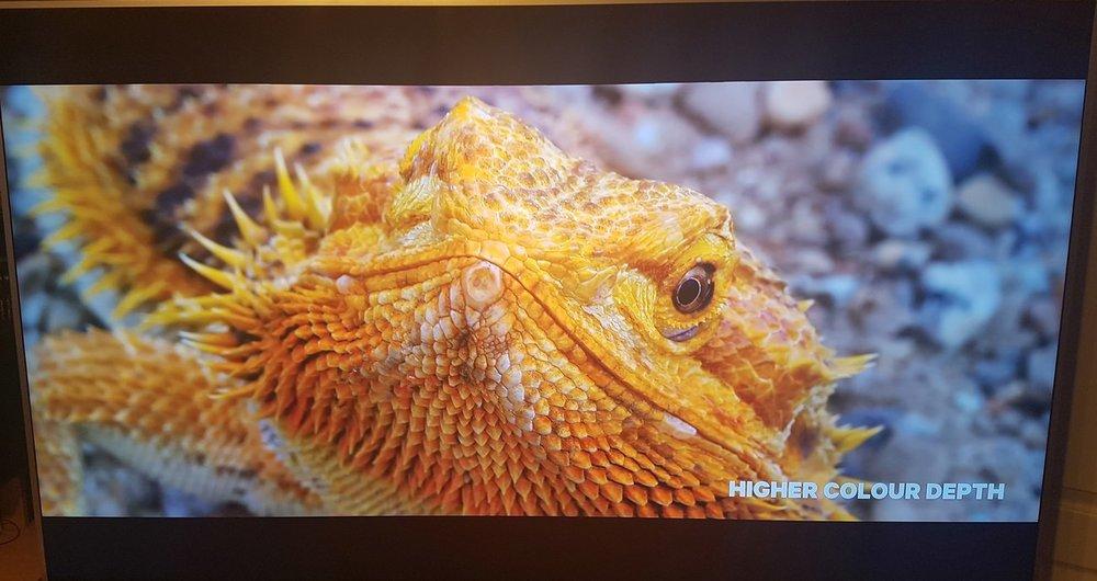 TV3 wysy.jpg