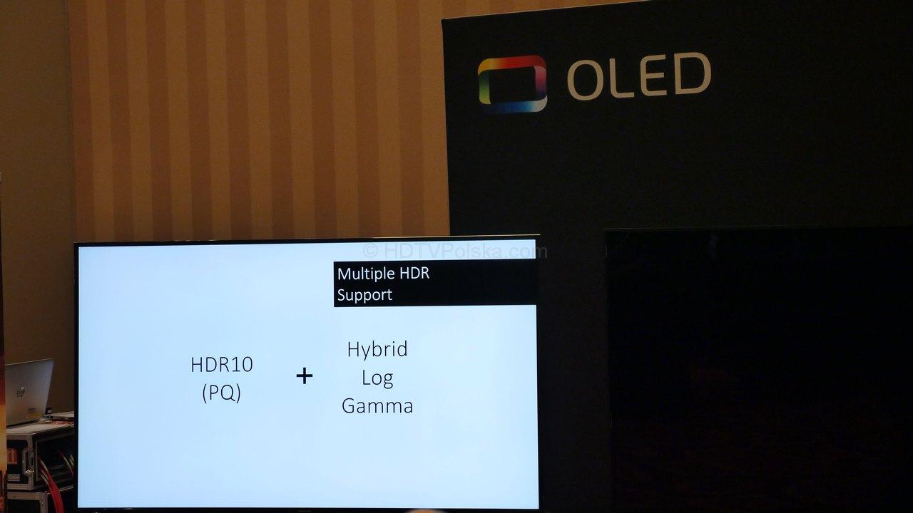 Panasonic OLED EZ1000
