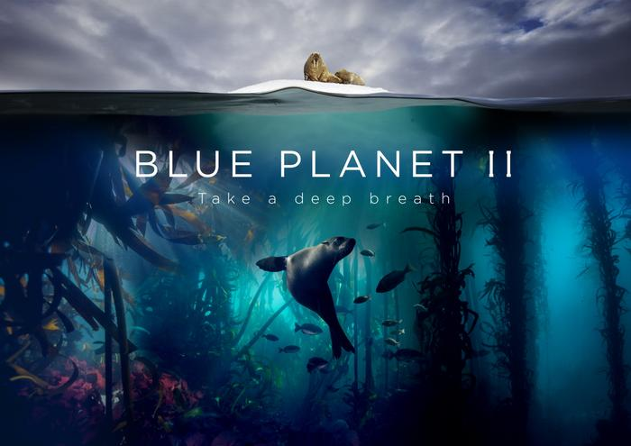 Błękitna planeta 2 nc+ 4k