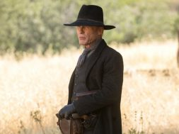 westworld-season-2-william_1523624515664-925×520.jpeg