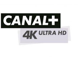 Logo Canal+ 4K Ultra HD