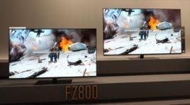 Panasonic FZ800 OLED TV | WIDEO TEST | Referencja obrazu do kina domowego