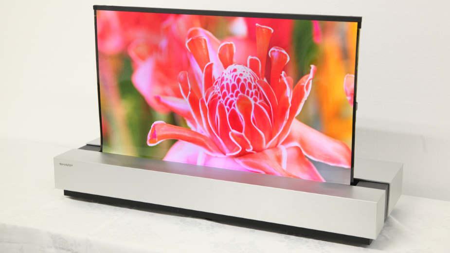 Sharp: rolowany OLED 4K na zdjęciach – ekran waży 100 g!
