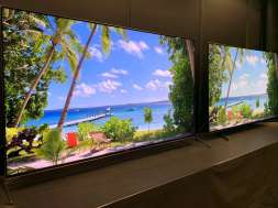 Nowe telewizory Sony OLED i LCD na 2020 rok. Pierwsze testy