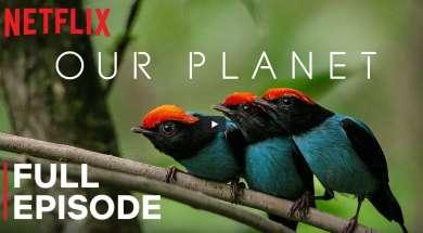 Nasza planeta za darmo na Netflix