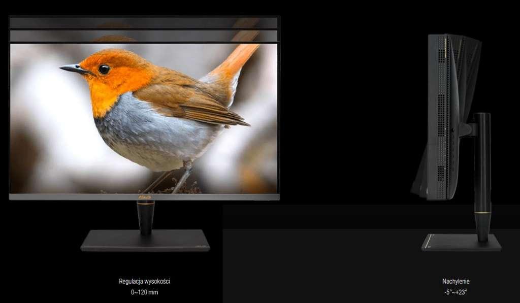 Test monitor miniled Asus PA32UCX ergonomia 1