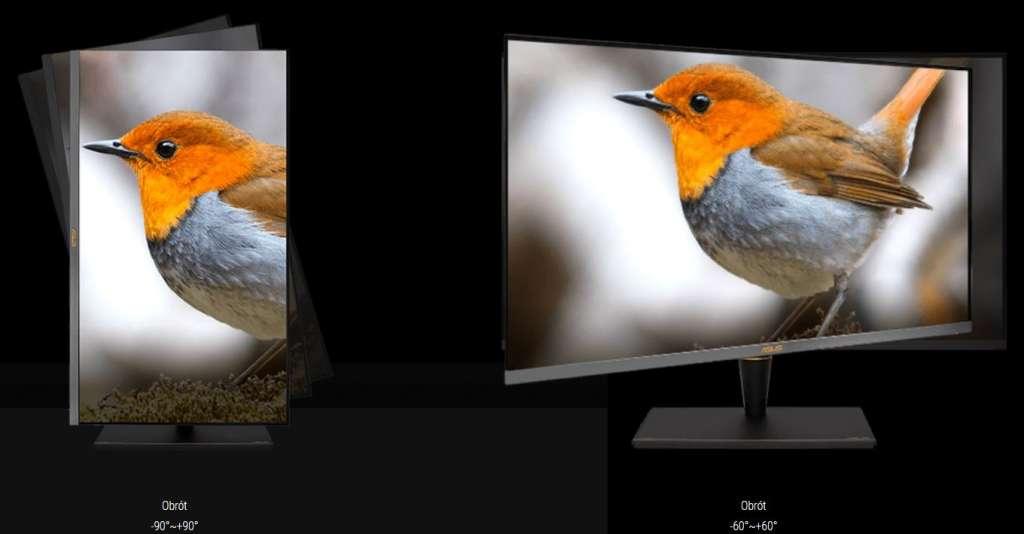 Test monitor miniled Asus PA32UCX ergonomia 2