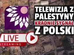 telewizja fajer tv palestyna kradzież sygnału canal+ polsat okładka
