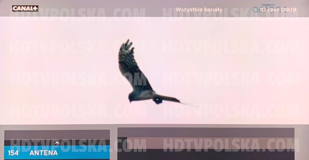 Nowy kanał z filmami i serialami Antena TV włączony z satelity Hot Bird! Jak wyszukać? W jakiej jakości nadaje?