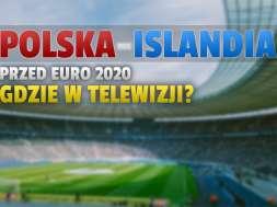 polska islandia euro 2020 mecz towarzyski okładka