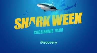 shark week player okładka