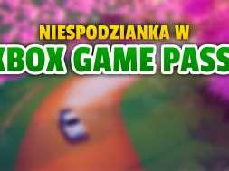 xbox game pass premiera art of rally okładka